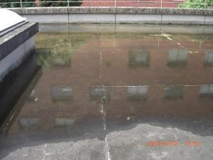 排水口の清掃前はこんなに水が溜まってしまっていました