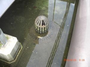 こちらも詰まってしまった排水口のため水が溜まってしまっています。