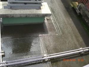 詰まりを解消して雨水が抜けた床面