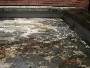 ゴミや汚れ、落ち葉などを取り除くことで詰まりを予防します。