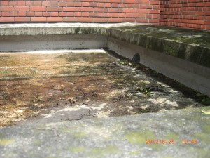 このような形状の床面は非常に汚れやゴミ、落ち葉が溜まりやすいです
