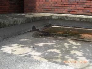 ゴミや落ち葉などで排水がしにくくなってしまった床面