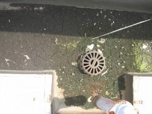 排水口の回りには泥や汚れが取り巻くように付着しています。